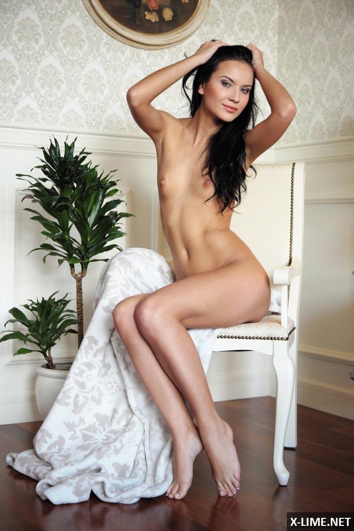 Сладкая стройная голая девушка брюнетка